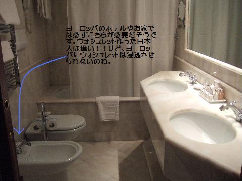2008_01080155