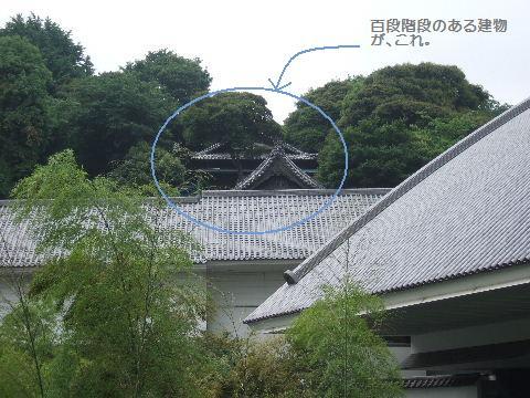 2008_06050015