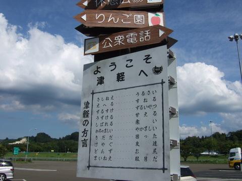 2008_08110022