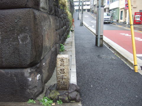 2009_02250015