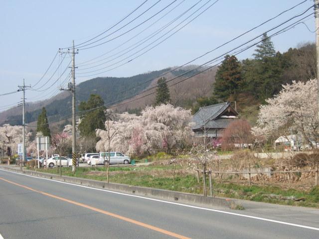 2009_04080081
