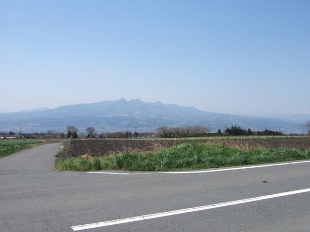 2009_04110168_2