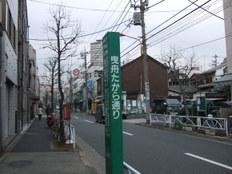 2009_02110076