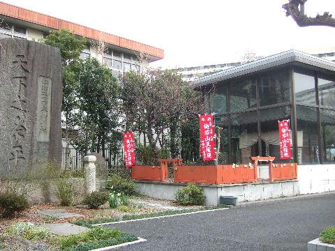 2008_02020011