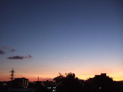 2008_11300033_2