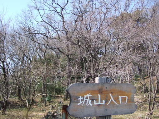 2009_02210046